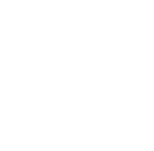 IDEAL Immigration Policy Group