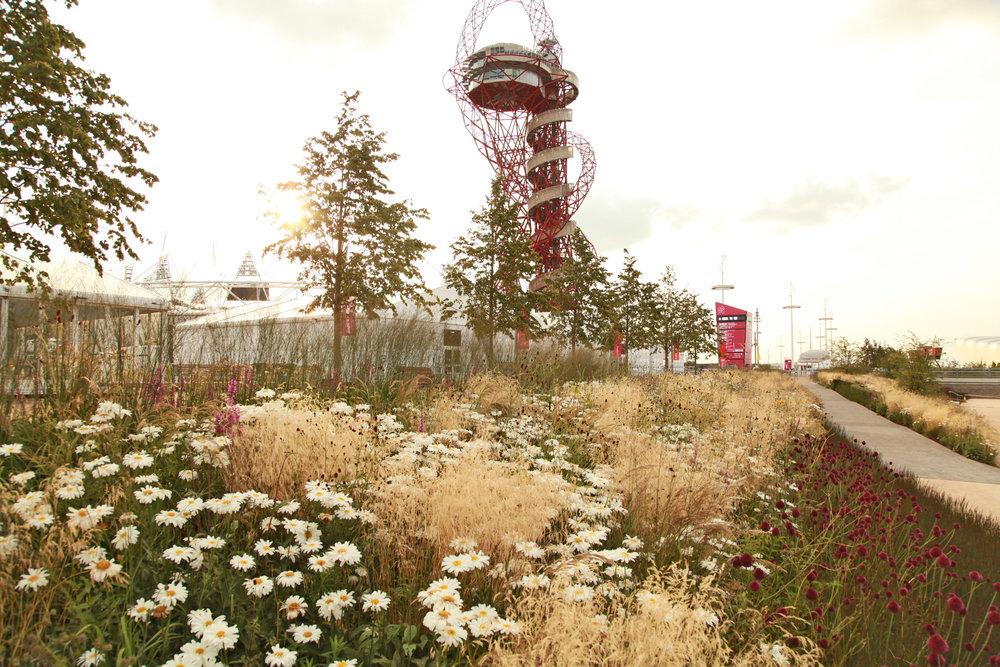 SPL_03_OlympicGardens_Europe_London.jpg