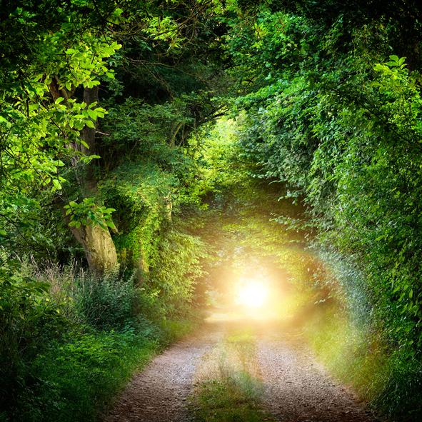 pathway-471005122.jpg