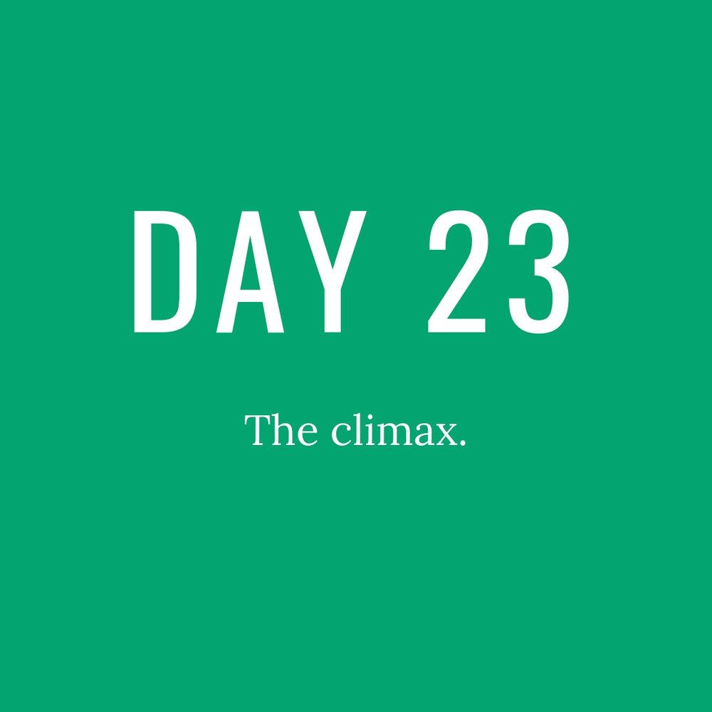 Day23.jpg