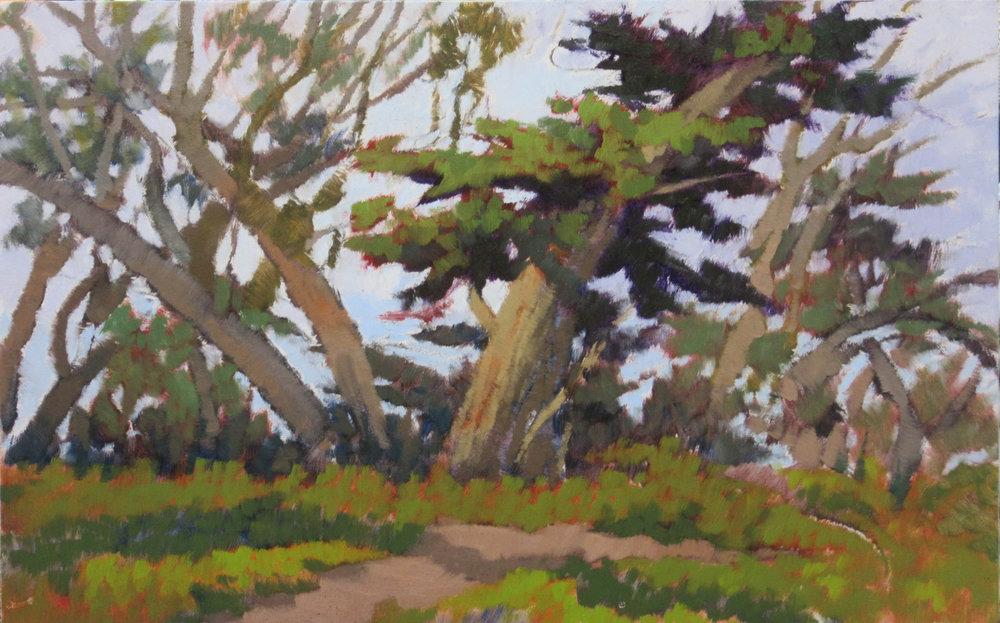 web oak site 2.jpg