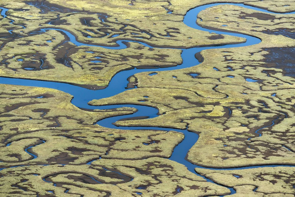 Carp Marsh, photo, Wm. B. Dewey