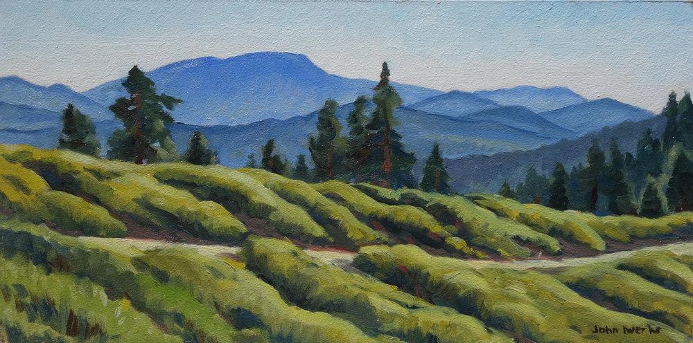 On Reyes Peak, oil, John Iwerks