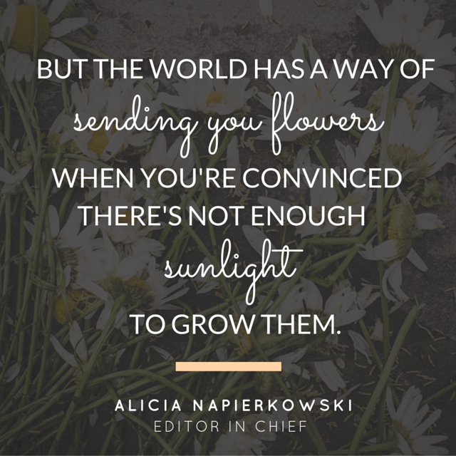 but the world has a way of sending you flowers when you're convinced there's not enough sunlight to grow them.