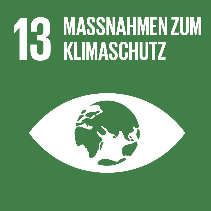 SDG-icon-DE-13.jpg