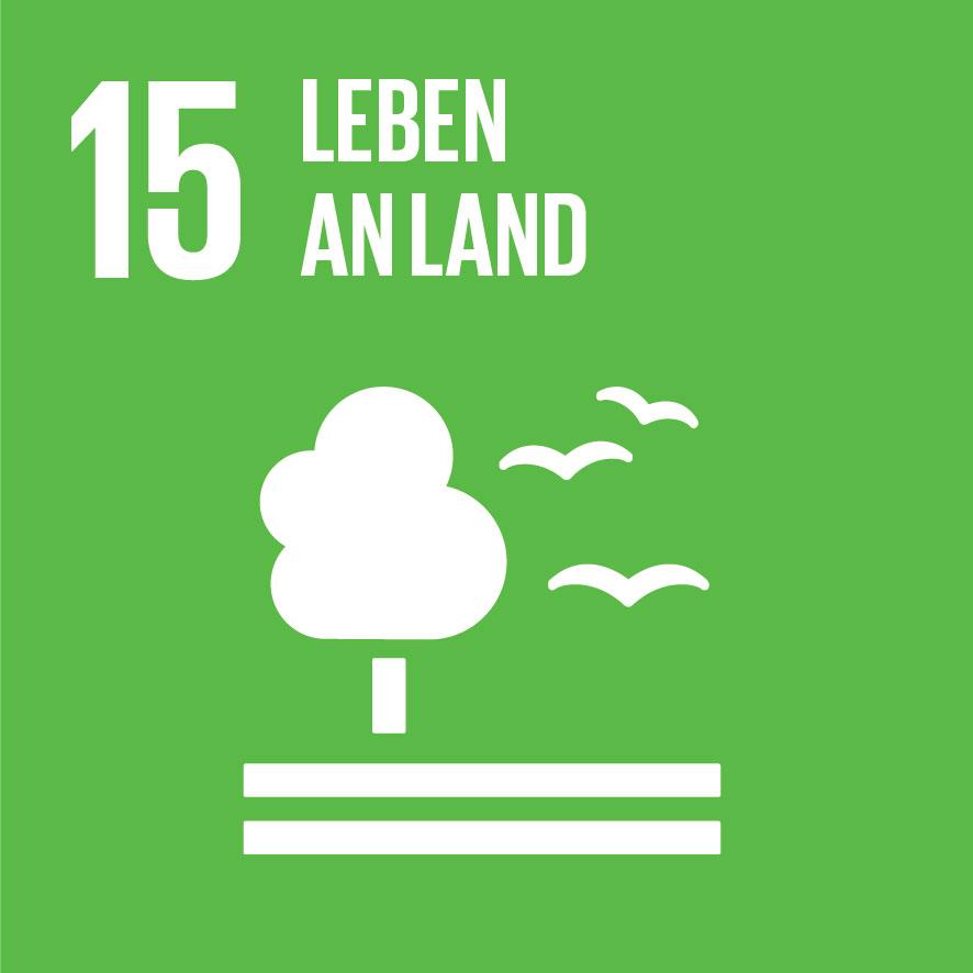 SDG-icon-DE-15.jpg