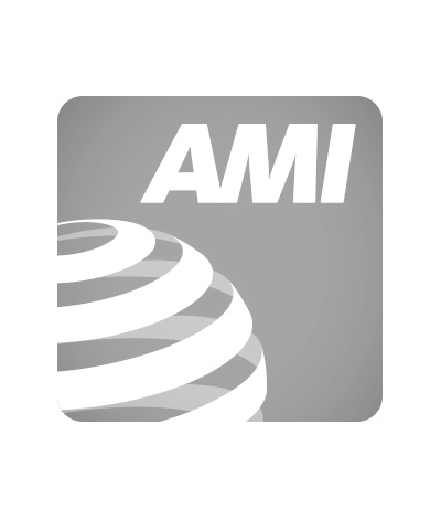 AMI-listing-400x480-1015696925.png