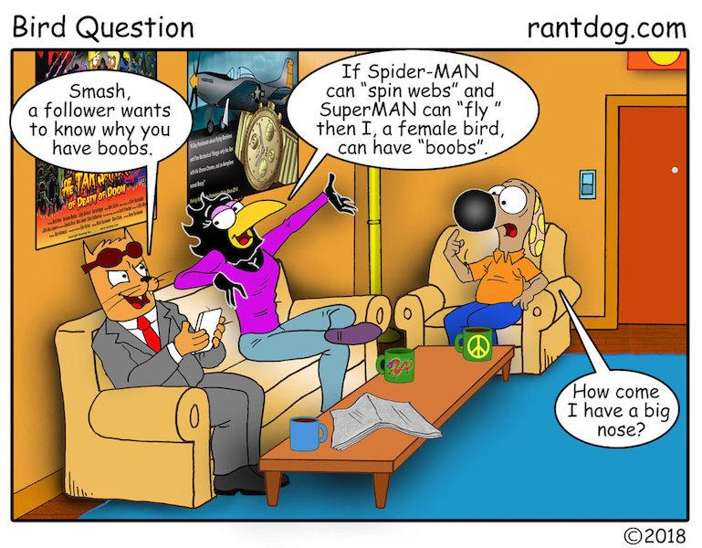 Rantdog Comics Bird Spiderman Superman