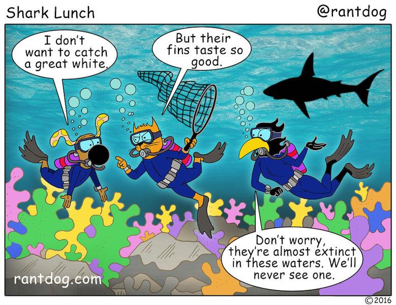 RDC_352_Shark+Lunch.jpg