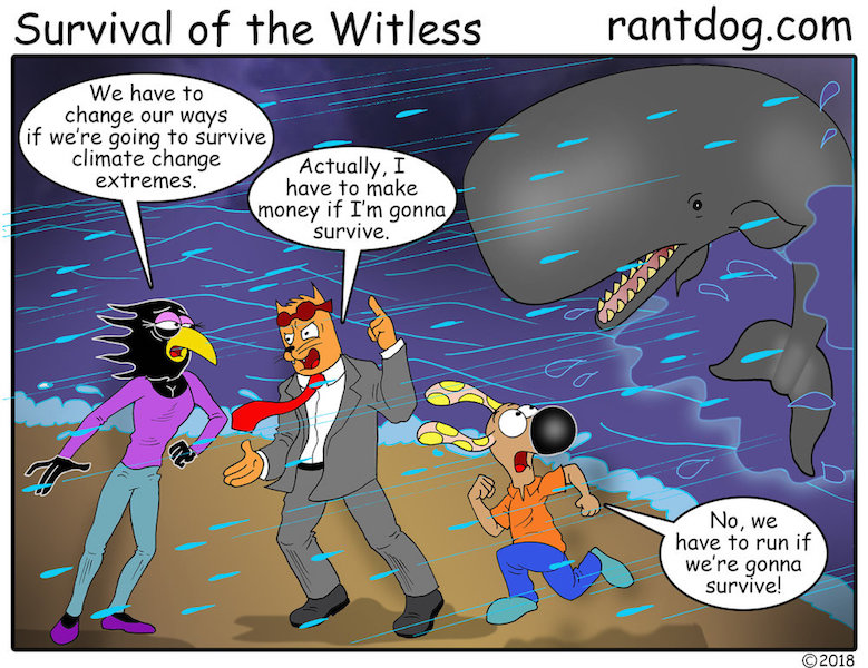RDC_573_Survivlal+of+the+Witless+SM.jpg