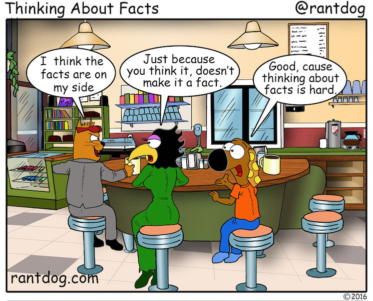 RDC_376_+Thinking+About+Facts.jpg
