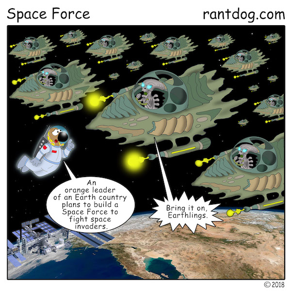 RDC_608_Space Force.jpg