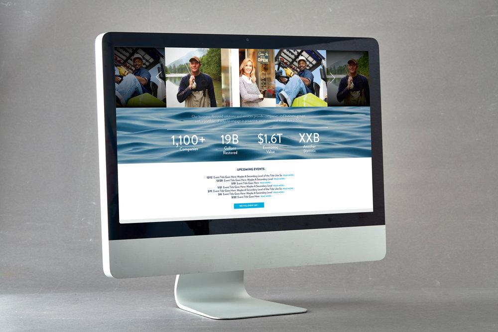 BWSwebsite2.jpg