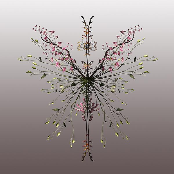 Farfalla | 60 x 60 cm | Sold Out