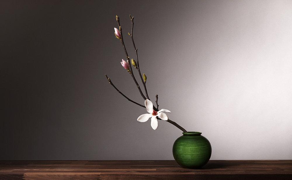 Magnolia in groene vaas I