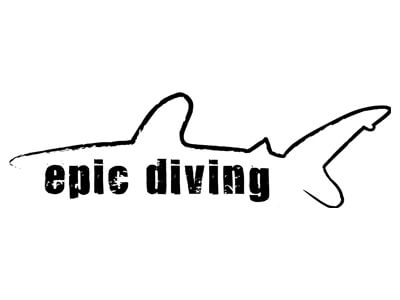 epic-diving-shark-research-institute.jpg