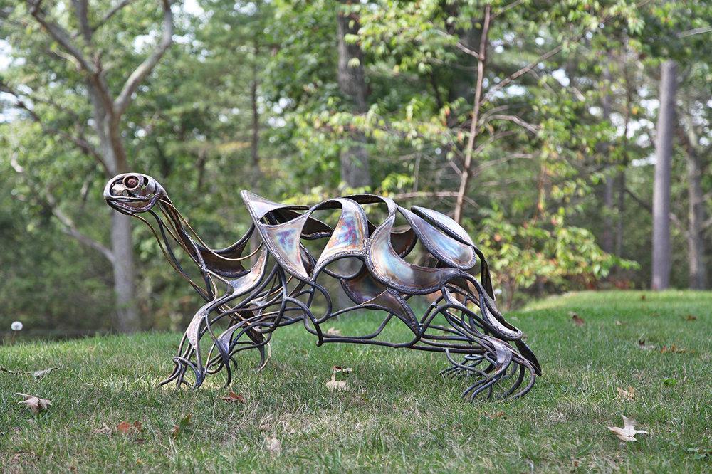 Turtle by Chris Williams.jpg