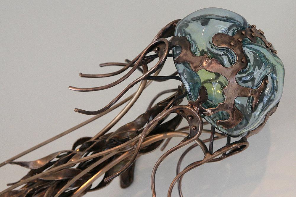 Jellyfish close up C Williams.jpg