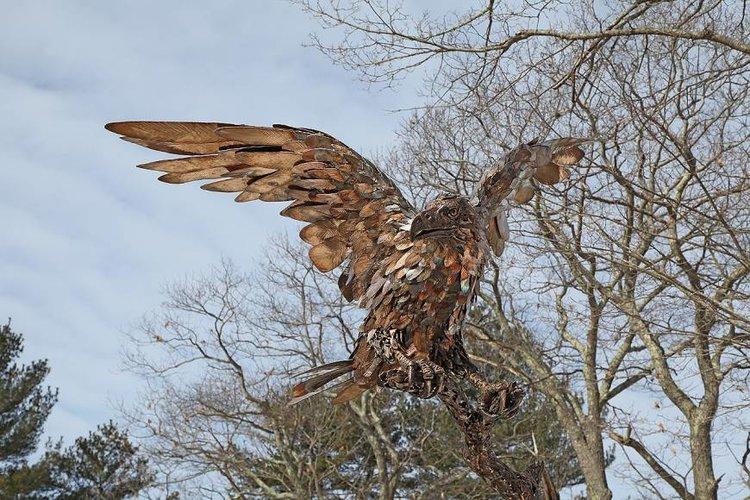 Eagle+2,+2_27.jpg
