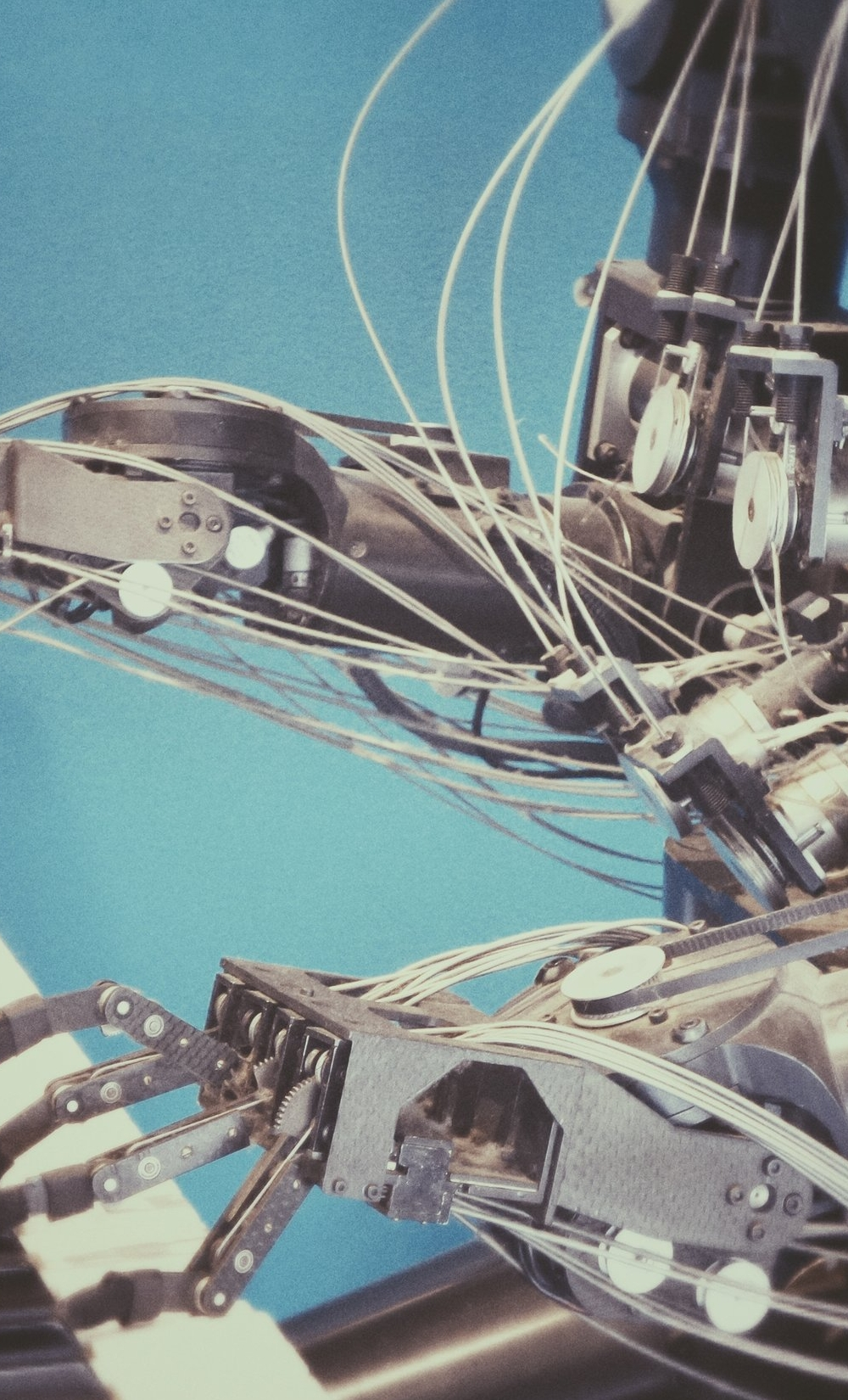 Workflows & Automation -