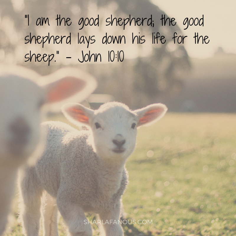 good shepherd.png