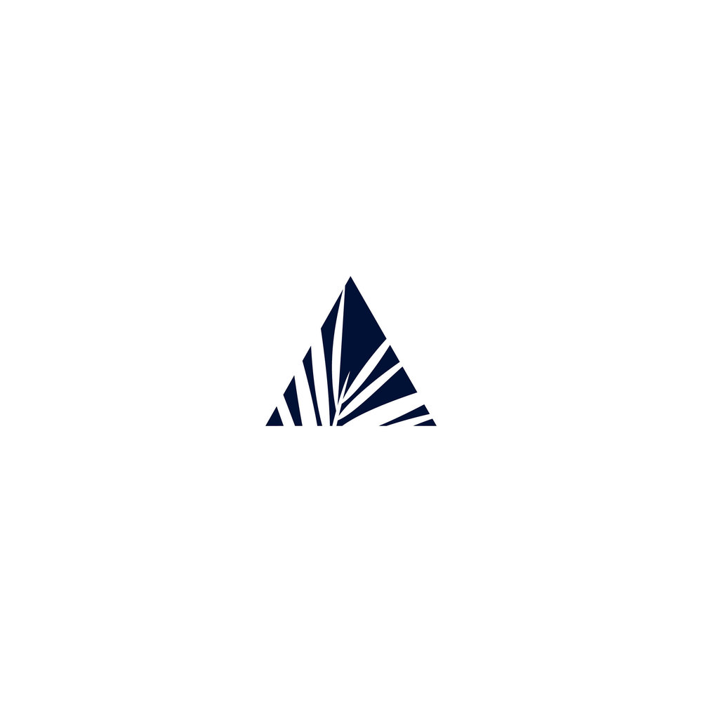 POP_logo-progress_KJ13.jpg