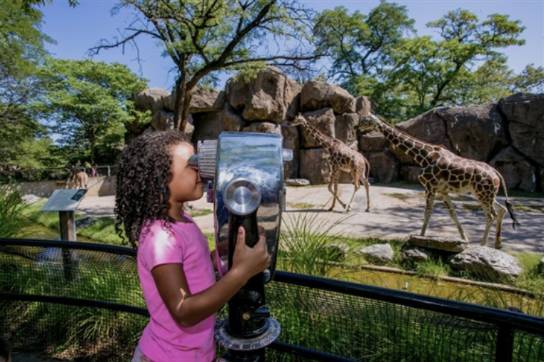 June 29 Philadelphia Zoo - America's first zoo, is a 42-acre Victorian garden that is home to more than 1300 animals, many of them rare and endangered.Levels 2 & 2X only.2, 5, & 6-week session studentsPrice TBAPurchase Deadline: TBA
