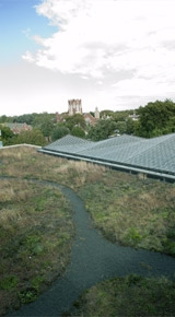 OPPL-Main-Green-Roof.jpg