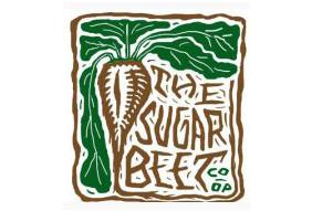Sugar-Beet2