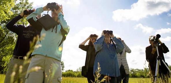 Birders with their binoculars.