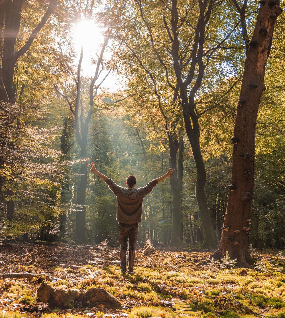 Fokke Baarssen/Shutterstock