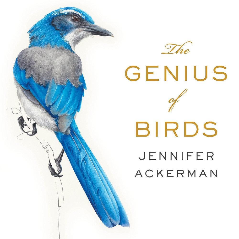 """""""The Genius of Birds"""" book cover."""