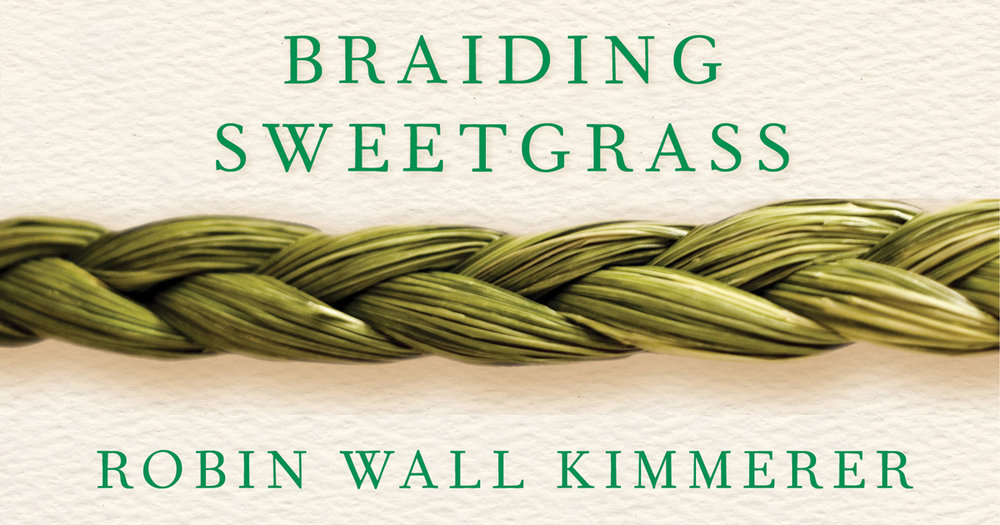 Image result for braiding sweetgrass