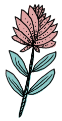 Jeanette-Zeis_pink-flower-drawing.png