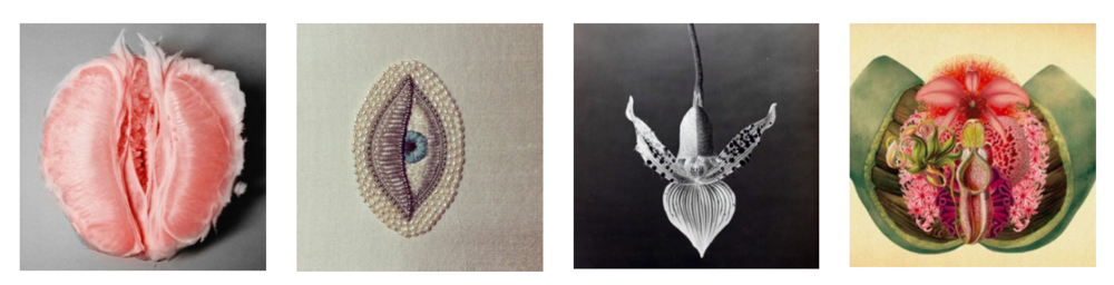 """Pieces of """"El Jardín de Eva"""" Mood Board, Photos Courtesy of Atelier Crump"""