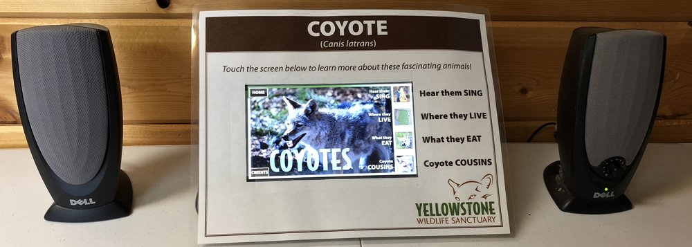 A functioning demo of the coyote sign, using the small demo screen.