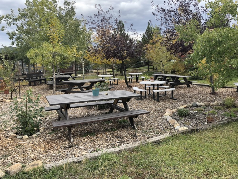Picnic Area 2018 Fall 05.JPG