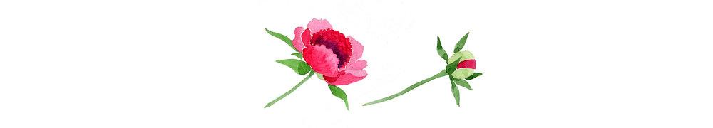 Magenta-Flower.jpg