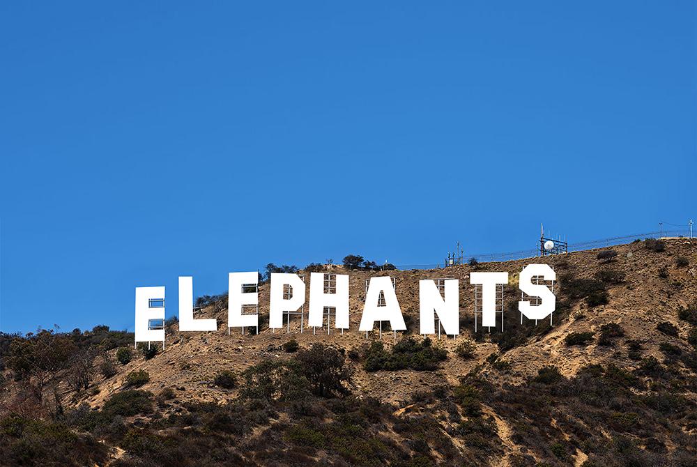 Hollywood Sign Flat.jpg