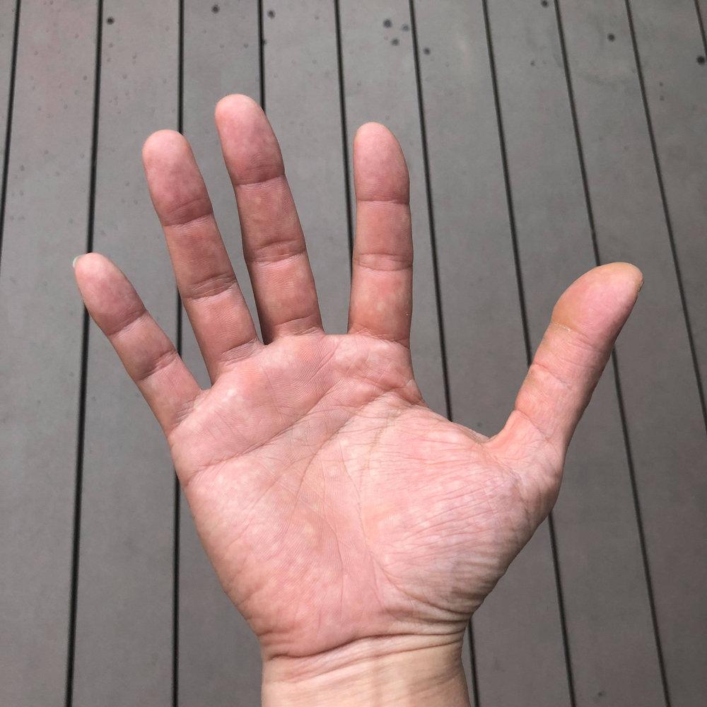 Long Thumb.jpg