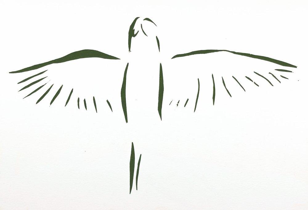 Line Animal: Bird