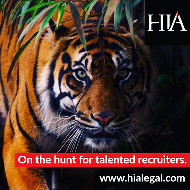 We are currently hiring. Call 0203 637 7070 or email contact@hialegal.com