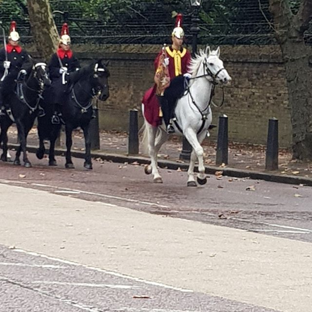 On the walk to work this morning👉👍❤London👍🐎 #hialegal  #london #walktowork #instapic #legal #law #legarecruiterlife #lovelondon #city