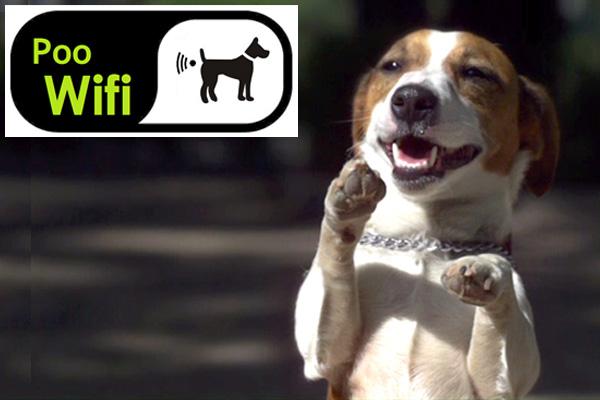 Poo-wifi1.jpg
