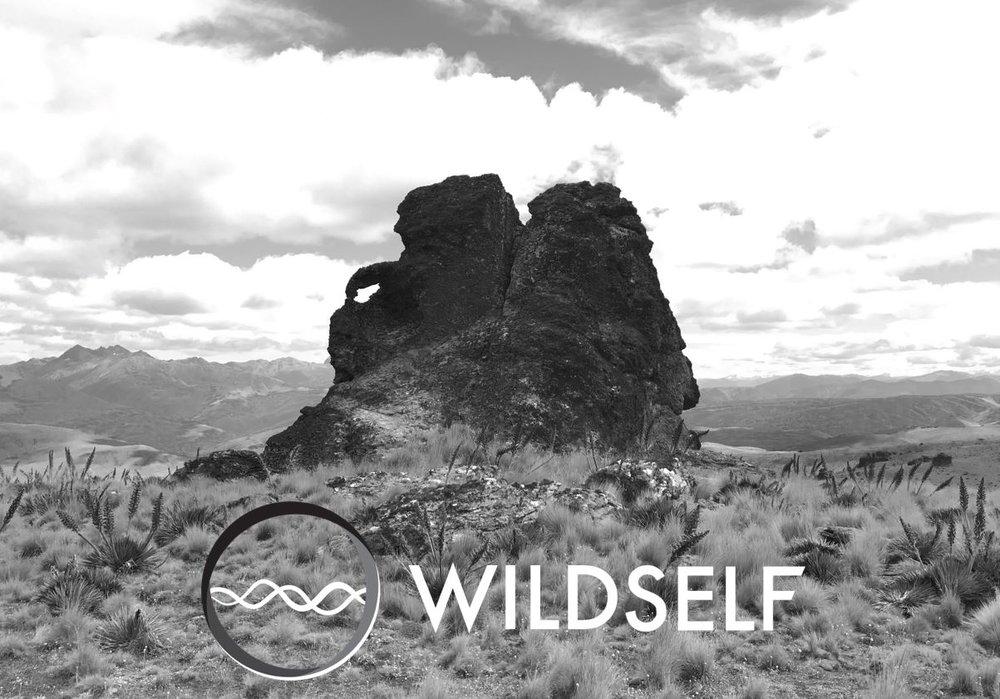 Wildself on Old Woman Range.JPG