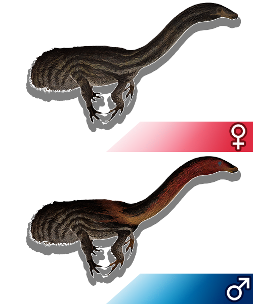 Sandbox Dino