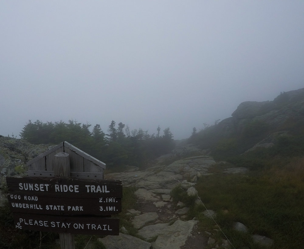 Early Summit