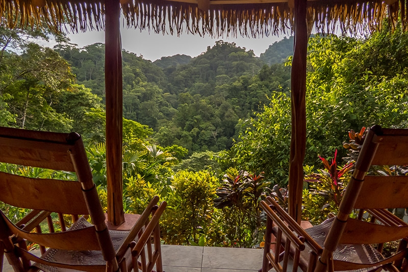Bunga2-luna-lodge-costa-rica.jpg