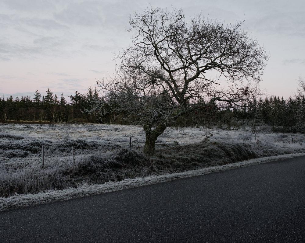 Oksbøl, Denmark. January, 2018.