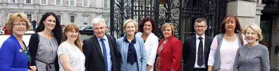 Leinster House Diabetes Delegation